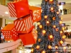 Lighting-of-the-christmas-tree-at-city-centre_46