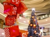 Lighting-of-the-christmas-tree-at-city-centre_47