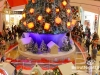 Lighting-of-the-christmas-tree-at-city-centre_48