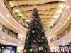 Lighting-of-the-christmas-tree-at-city-centre_8