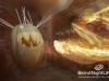 national-pumpkin-day-zucca-31