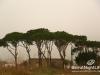 saidoun-jezzin-touristic-068