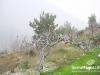 saidoun-jezzin-touristic-080