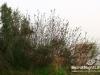 saidoun-jezzin-touristic-098