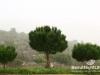 saidoun-jezzin-touristic-108