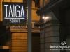 saturday-night-taiga-182