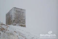 Snow At Cedars-Bcharre 2012