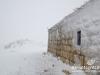 snow-cedars-bcharre-lebanon-03