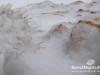 snow-cedars-bcharre-lebanon-07