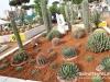 garden-show-beirut-201219