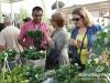 garden-show-beirut-201224