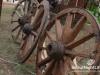 garden-show-beirut-201240