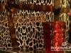 valentine-cavalli-caffe-69