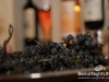 vinifest-opening-228