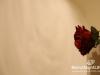 zeina-kash-fairytale-097